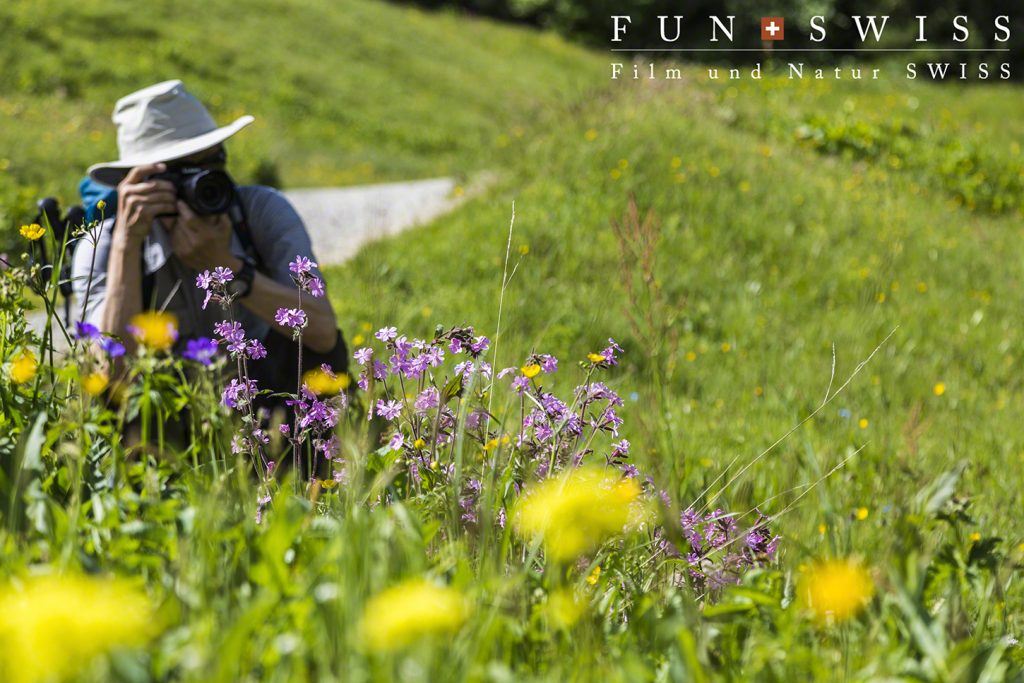どこを撮ってもお花畑♪