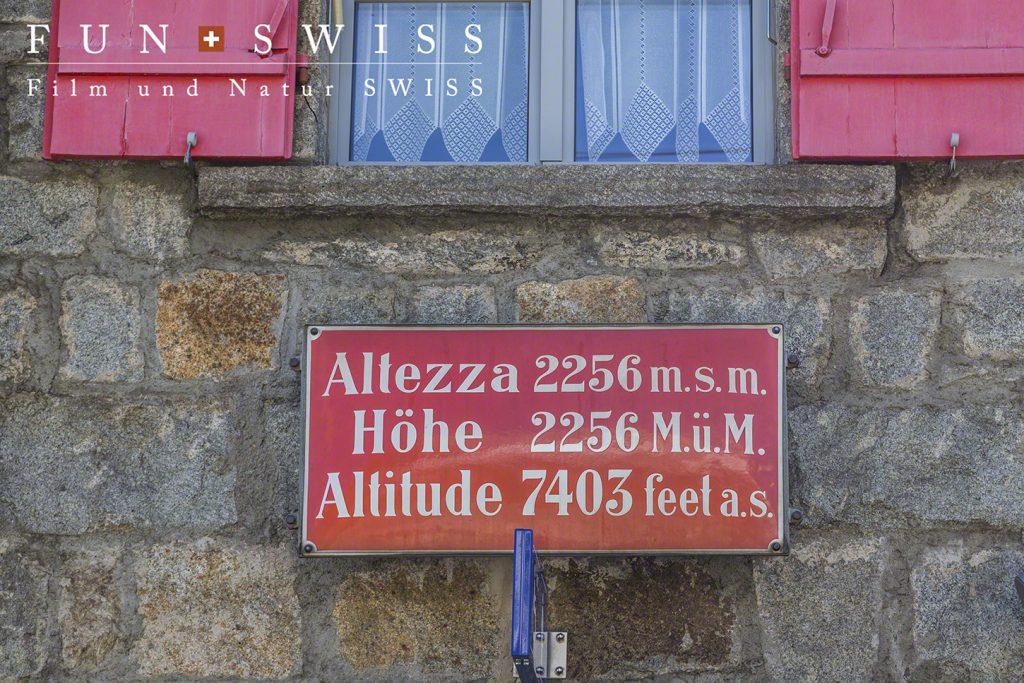 ベルニナ路線の最高地点駅(オスピッツォ・ベルニナ)2,256mからハイキング!