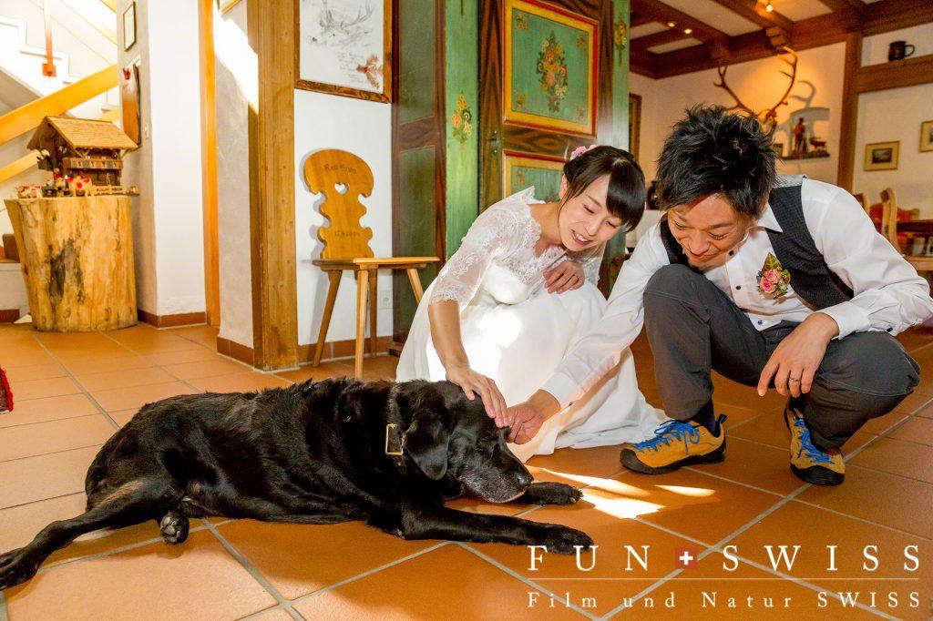 動物好きのお二人とホテルの看板犬