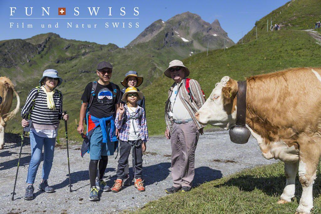 フィルスト展望台は牛さん祭りでした~♪