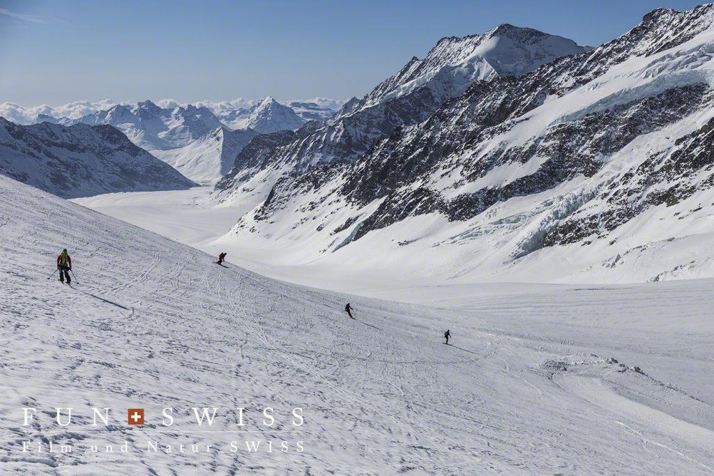 アレッチ氷河スキー