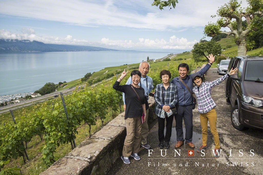 世界遺産のラヴォー地区のワイン畑にて
