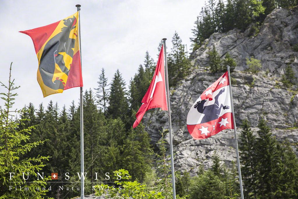 スイス国旗、ベルンの州旗、グリンデルワルトの村旗