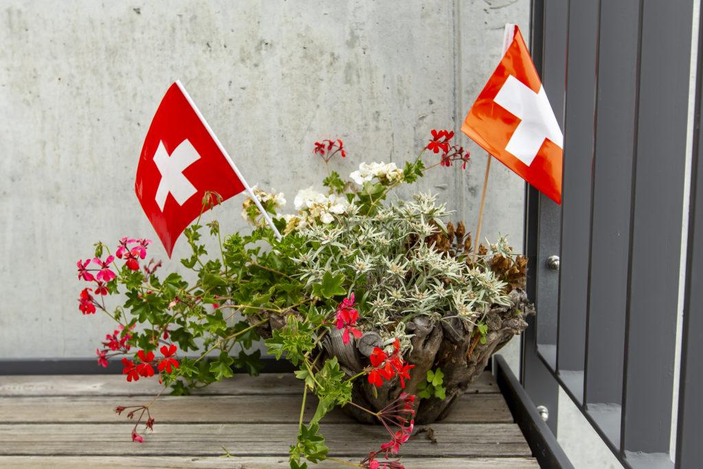 エーデルワイス&ゼラニウム+スイス国旗!