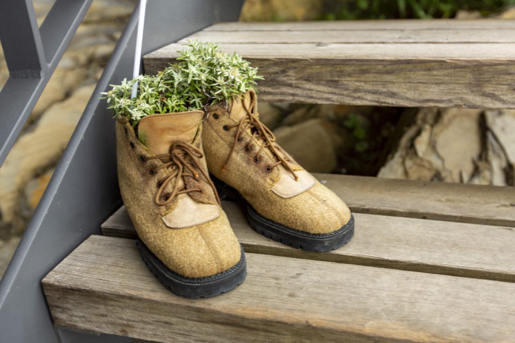 ブーツを使った鉢植え