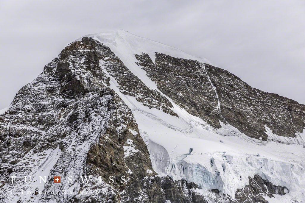 メンヒ登山者がゴマ粒の様に稜線に、、、、